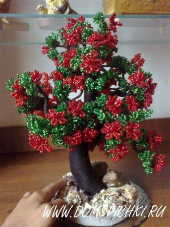 Дерево Бонсай: Калина