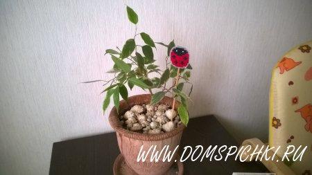 Изготовление декоративного украшения для цветочного горшка.